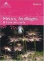 """Afficher """"Fleurs, feuillages & fruits décoratifs"""""""