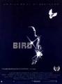 """Afficher """"Bird"""""""