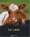 """Afficher """"veau (Le)"""""""