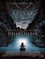 "Afficher ""Dreamcatcher"""