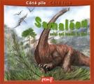 """Afficher """"Sur les traces des dinosaures"""""""
