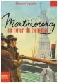 """Afficher """"Montmorency au coeur du complot"""""""