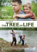 """Afficher """"The Tree of life, l'arbre de vie"""""""