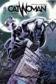 vignette de 'Catwoman n° 1<br /> La règle du jeu (Judd Winick)'