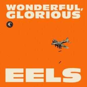 vignette de 'Wonderful, glorious (Eels)'