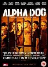 "Afficher ""Alpha dog"""
