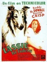 """Afficher """"Fidèle Lassie"""""""