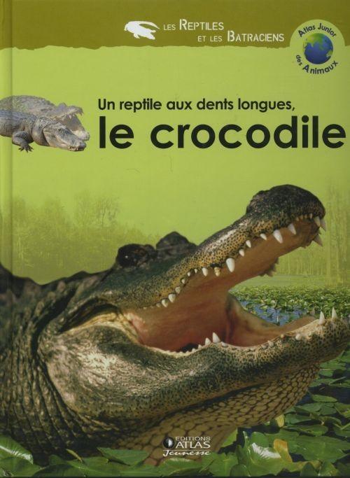 Un reptile aux dents longues, le crocodile