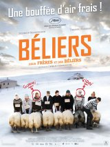 "Afficher ""Béliers"""