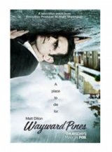 vignette de 'Wayward Pines (Hunter, Tim)'