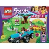 """Afficher """"LEGO FRIENDS LE MARCHE"""""""