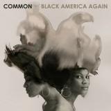 """Afficher """"Black america again"""""""