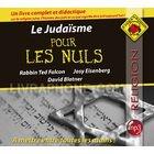 """Afficher """"Le judaïsme pour les nuls"""""""