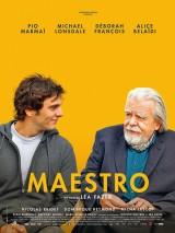 """Afficher """"Maestro"""""""