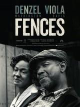 """Afficher """"Fences"""""""