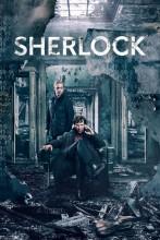 "Afficher ""Sherlock : saison 4"""