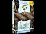 """Afficher """"Intelligence des arbres (L')"""""""