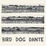 """Afficher """"Bird dog dante"""""""