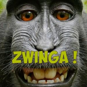 "Afficher ""Zwinga !"""