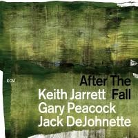 "Afficher ""After the fall"""