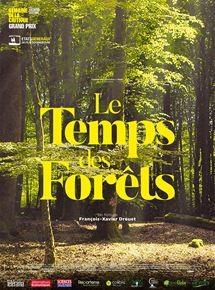 """Afficher """"Temps des forêts (Le)"""""""