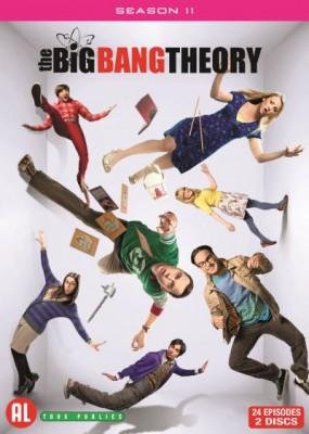"Afficher ""The Big Bang Theory - Saison 11"""
