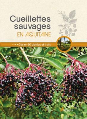 Cueillettes sauvages en Aquitaine,
