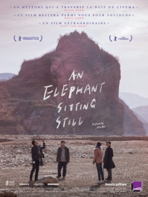 "Afficher ""An elephant sitting still"""