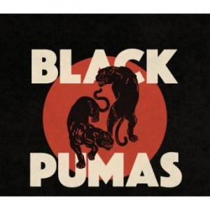 vignette de 'Colors (Black Pumas)'