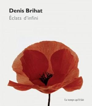 """Afficher """"Denis Brihat, Éclats d'infini"""""""