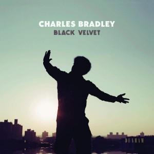 """Afficher """"Black velvet"""""""