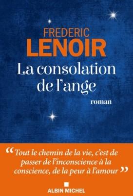 vignette de 'La consolation de l'ange (Frédéric Lenoir)'