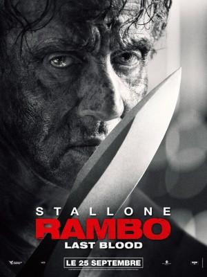 "Afficher ""Rambo : last blood"""