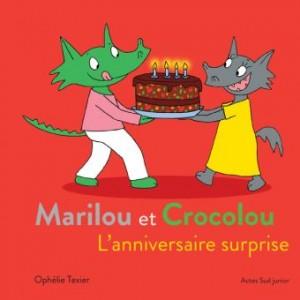 """Afficher """"L'anniversaire surprise"""""""