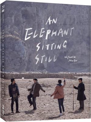 "Afficher ""An Elephant Sitting Still"""
