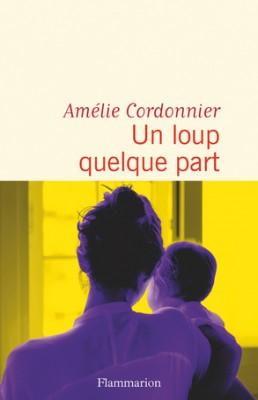 vignette de 'Un loup quelque part (Amélie Cordonnier)'