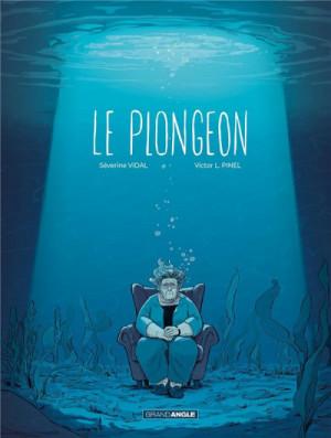 vignette de 'Le plongeon (Séverine Vidal)'