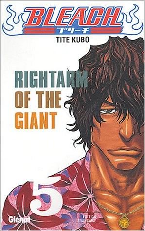 "<a href=""/node/184644"">Rightarm of the giant</a>"
