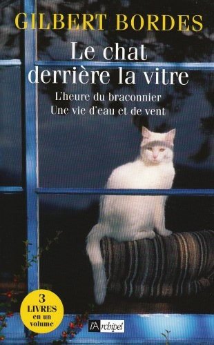 Le chat derrière la vitre