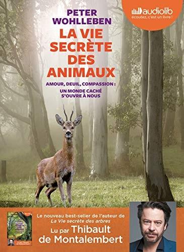"""<a href=""""/node/183625"""">La vie secrète des animaux </a>"""