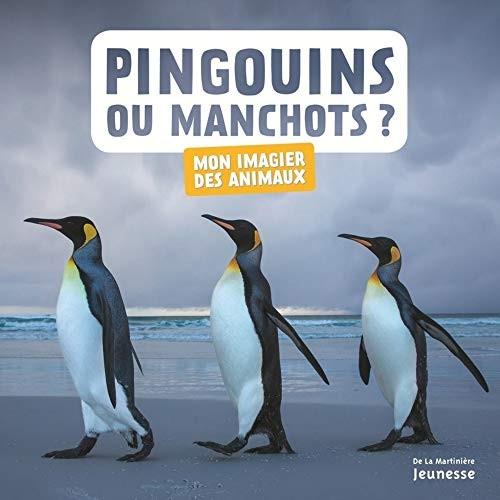 "<a href=""/node/21008"">Pingouins ou manchots ?</a>"