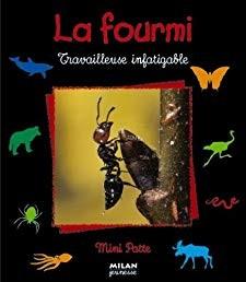 """Afficher """"La fourmi, travailleuse infatigable"""""""