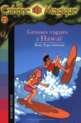 """Afficher """"La cabane magique n° 23 Grosses vagues à Hawaï"""""""