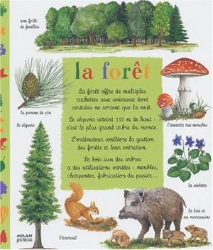 """Afficher """"forêt (La)"""""""
