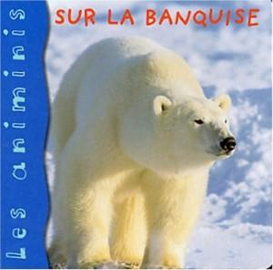 """Afficher """"Sur la banquise"""""""