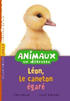 """Afficher """"Animaux en détresse n° 5 Léon, le caneton égaré"""""""