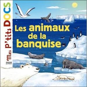 """Afficher """"Les animaux de la banquise"""""""