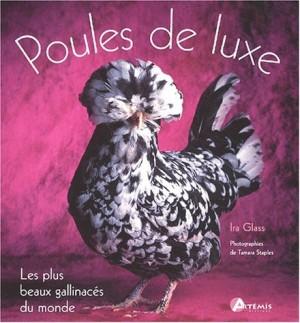 """Afficher """"Poules de luxe"""""""