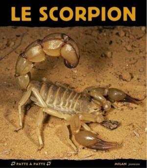 """Afficher """"Le scorpion"""""""