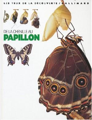 """Afficher """"De la chenille au papillon"""""""